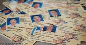 các loại giấy phép lái xe
