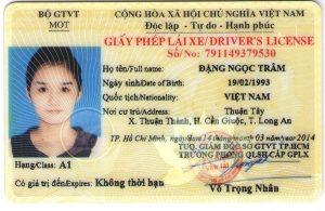 giấy phép lái xe hạng a1